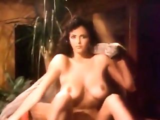Playboy Raw & Wild